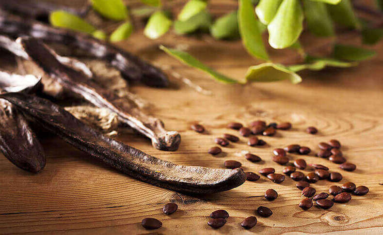 reife Johannisbrotbaum-Samen freiliegend neben ihren Schoten, in denen sie gewachsen sind